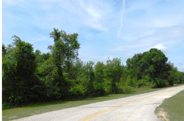 HALL OF FAME DR (21), Lake City, 32055, ,Commercial Lot,For Sale,HALL OF FAME DR (21),1994